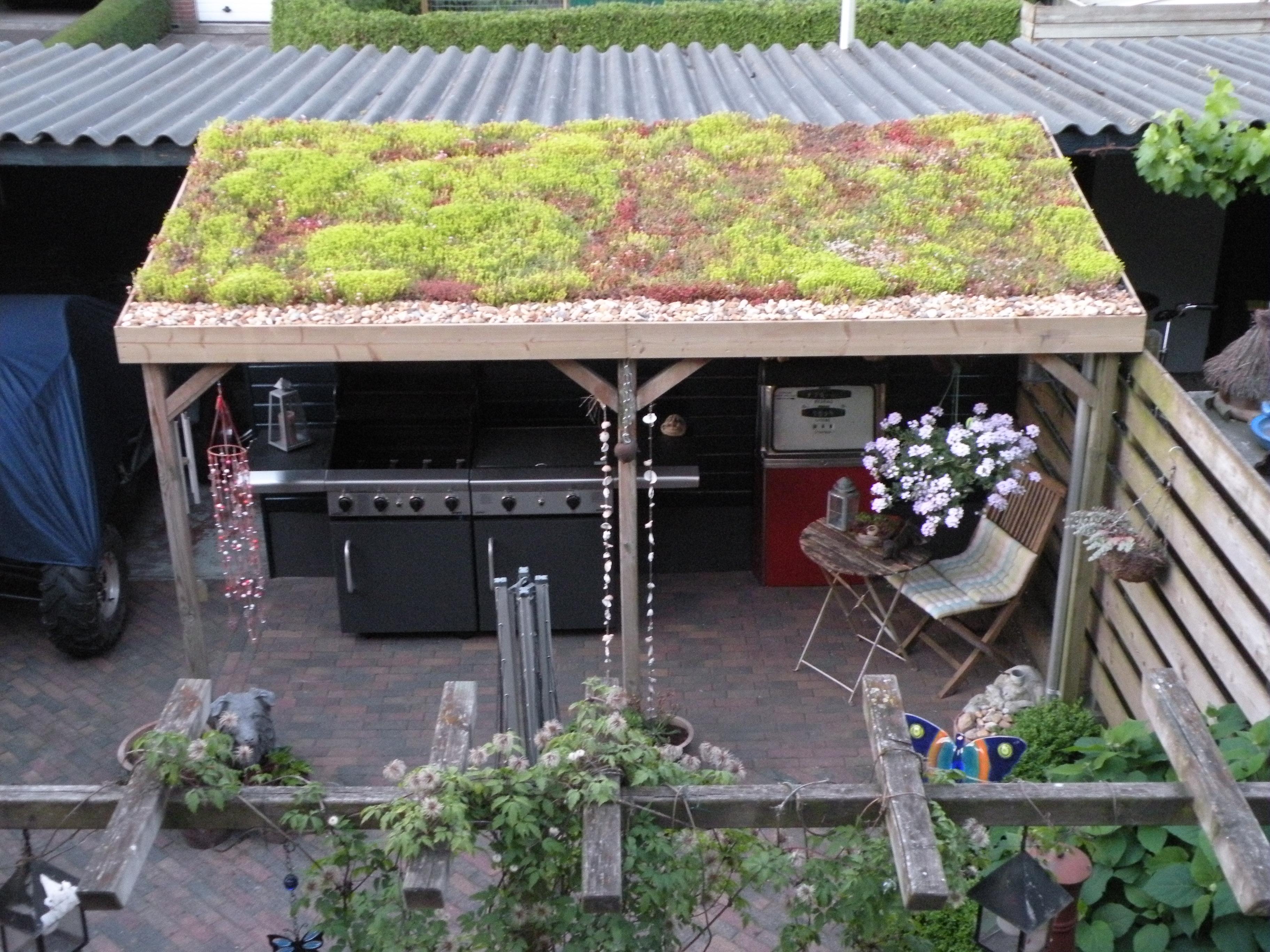 Groendak een dak vol vetplantjes groendak - Kleine prieel ...