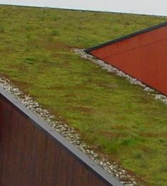 Onderliggende dakbedekking: gewoon vijverfolie?!