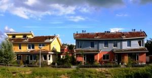 Groendak in Flevoland