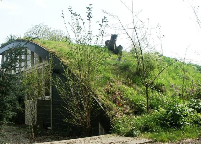 Groengrasdak - wildgroei