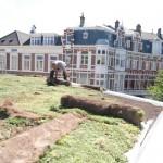 Amsterdam: subsidie op groene daken en gevels
