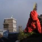 Sinterklaas wil meer groene daken.