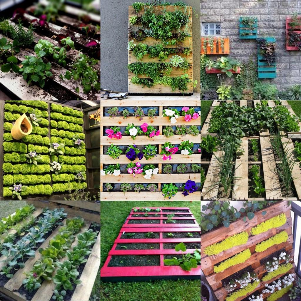 Pallets maak een verticale tuin groendak - Maak een eigentijdse tuin aan ...