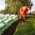 Subsidie groene daken Almelo