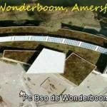 Wonderboom na 15 jaar zomerklaar.