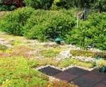 Tuinhuis goed gemutst