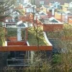 Nog meer Groene daken in Haarlem!