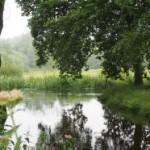 'Groen en water voor klimaatherstel'