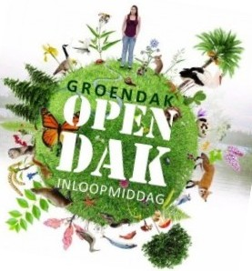OPEN DAK of WORKSHOP