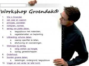 WORKSHOP GROENE DAKEN AANLEGGEN - kopie