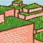 Groene daken verdienen de hoofdrol!